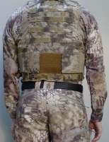 BALCS LVR highlander Kryptek camouflage back